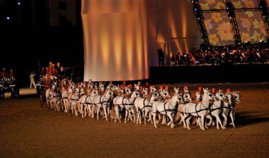 40_arabische-pferde
